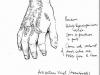 burnscardorsumofhand_disc3x500