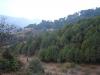 anandabanjan2008168_x500