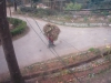 anandabanjan2008275_x500