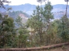 anandabanjan2008256_x500